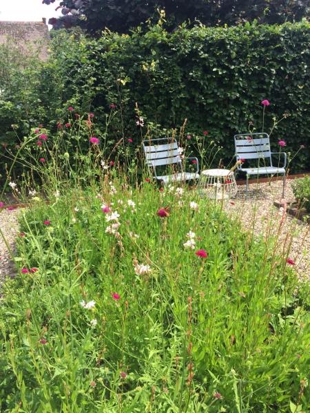 tuinontwerp met uitbundige beplanting