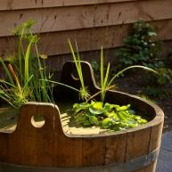 tuinontwerp met vijver voor de kleine tuin