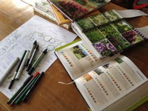 renovatieplan beplanting